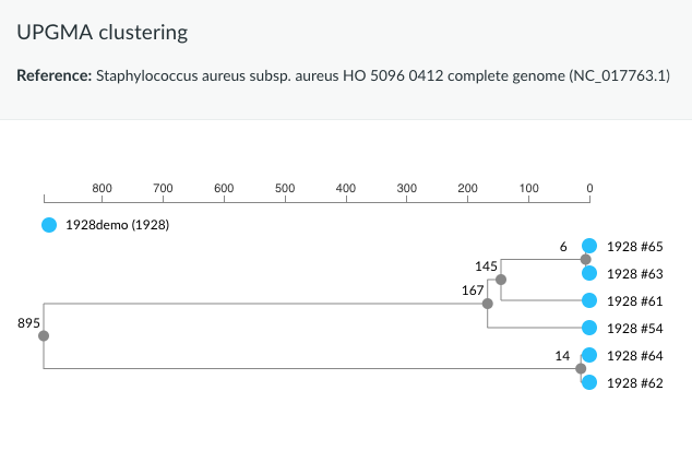 SNP UPGMA-clustering of Staphylococcus aureus NGS samples using the 1928 platform